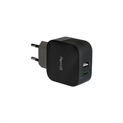 Celly Wall Charger 2 Port Usb Type-C Black